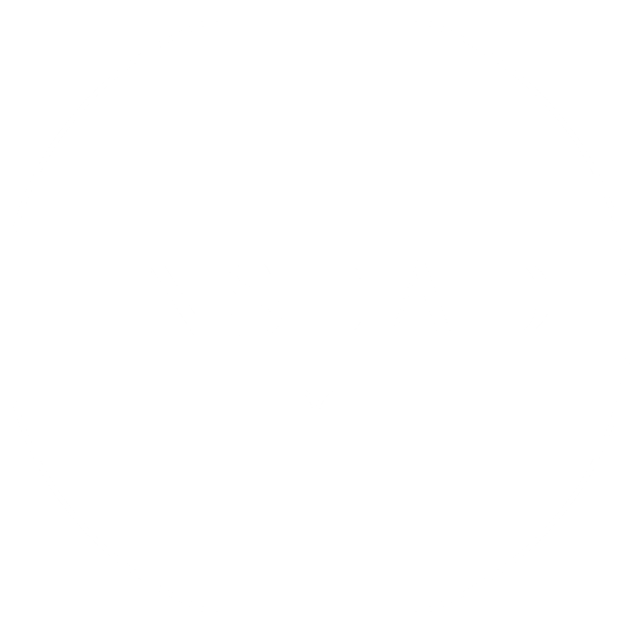 INSEAD Angels of Silicon Valley
